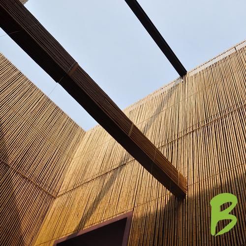 Bamboe wand