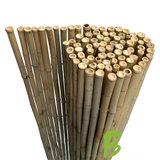 Bamboemat 200 x 250 kopen