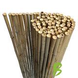 Bamboemat 180 x 180 kopen