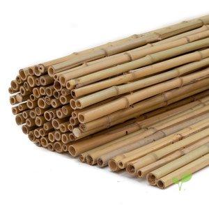 Bamboematten Naturel 1 meter hoog